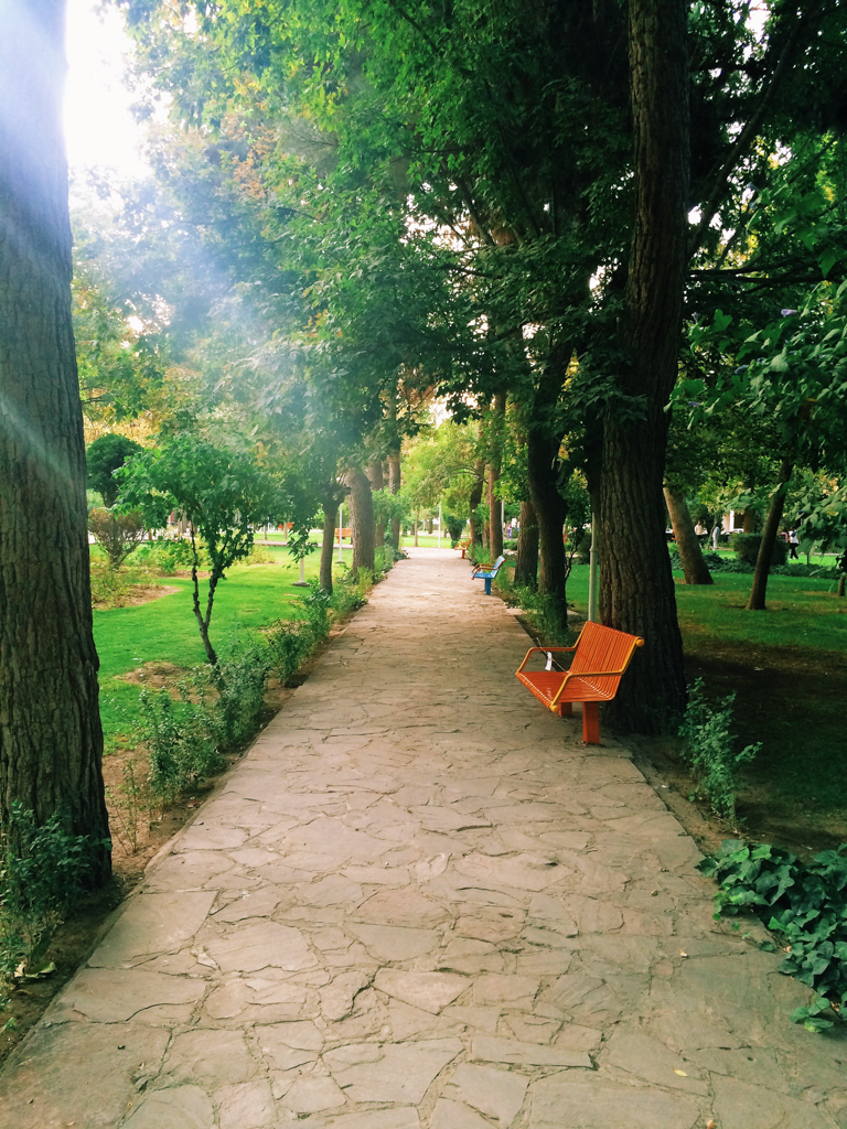 The beautiful pathway in the park